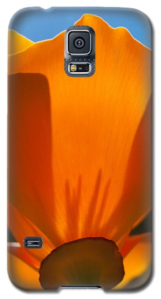 Californian Poppies Galaxy S5 Case