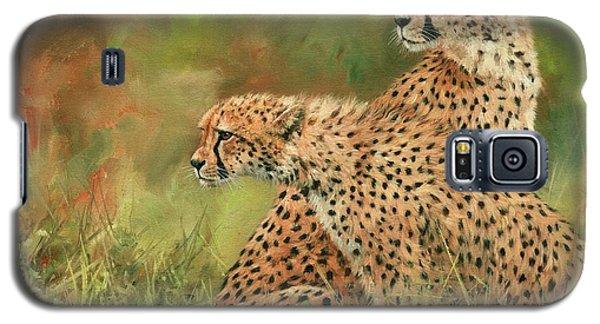 Cheetahs Galaxy S5 Case by David Stribbling