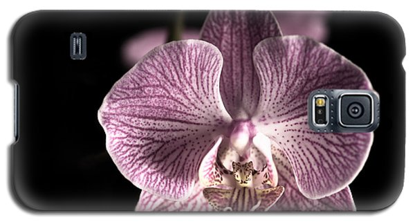 Close Up Shoot Of A Beautiful Orchid Blossom Galaxy S5 Case
