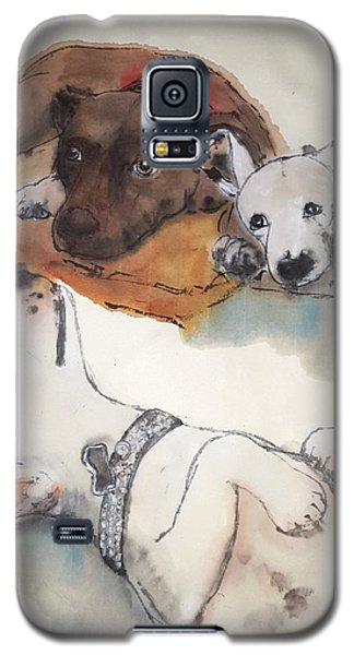 Dogs Dogs  Dogs Album Galaxy S5 Case