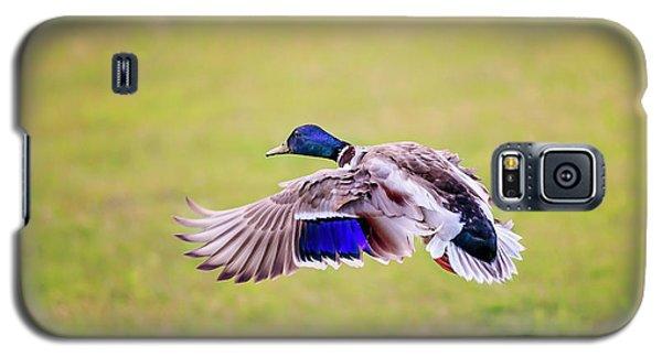 Duck-drake Galaxy S5 Case