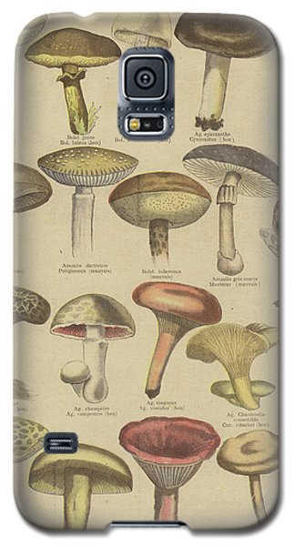 Edible And Poisonous Mushrooms Galaxy S5 Case