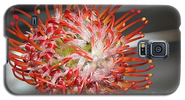 Exotic Flower Galaxy S5 Case by Elvira Ladocki