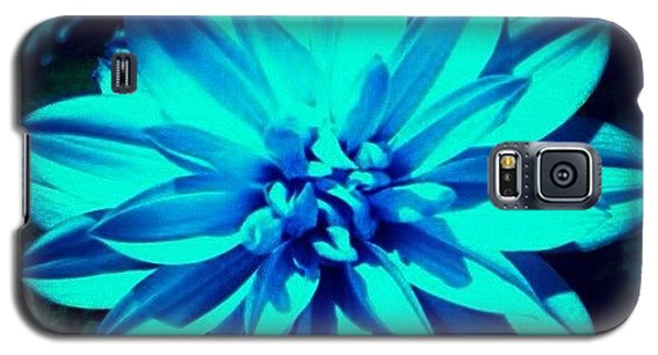Flower Galaxy S5 Case by Katie Williams