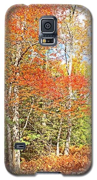 Galaxy S5 Case featuring the digital art Forest Interior Autumn Pocono Mountains Pennsylvania by A Gurmankin