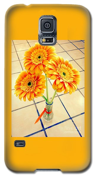 3 Golden Yellow Daisies Gift To My Beautiful Wife Suffering With No Hair Suffering Frombreast Cancer Galaxy S5 Case
