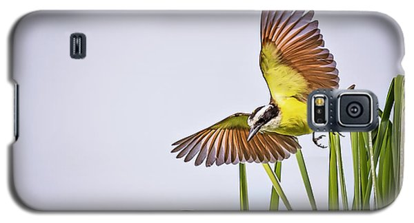 Great Crested Flycatcher Galaxy S5 Case