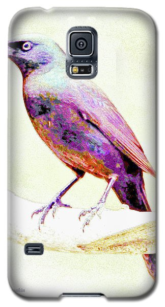 Great-tailed Grackle Galaxy S5 Case
