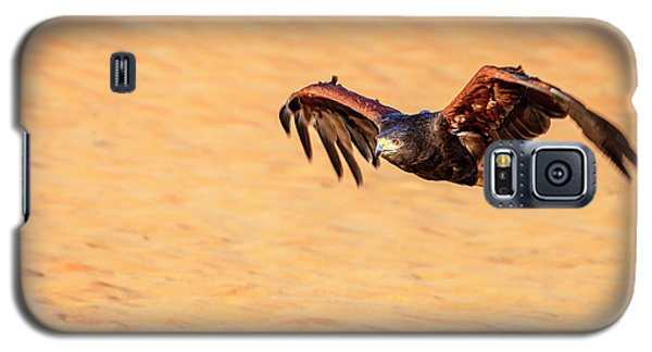 Galaxy S5 Case featuring the photograph Harris Hawk by Alexey Stiop