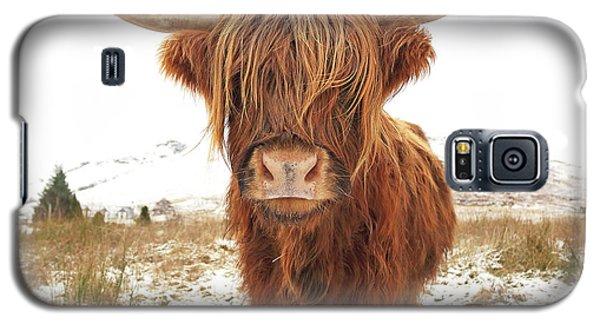 Highland Cow Galaxy S5 Case