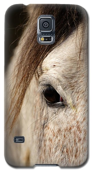Horse Portrait Galaxy S5 Case by Ian Middleton