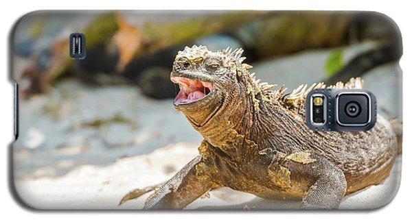 Marine Iguana On Galapagos Islands Galaxy S5 Case by Marek Poplawski
