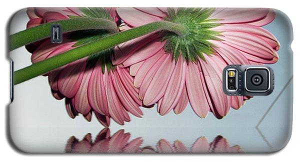 Pink Gerbers Galaxy S5 Case by Elvira Ladocki