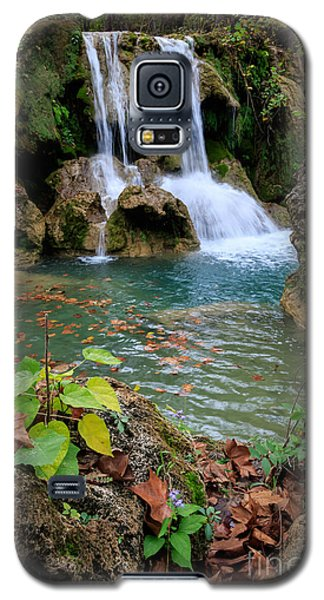 Price Falls In Autumn Color.  Galaxy S5 Case
