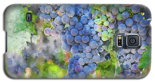 Red Wine Grapes On The Vine Galaxy S5 Case