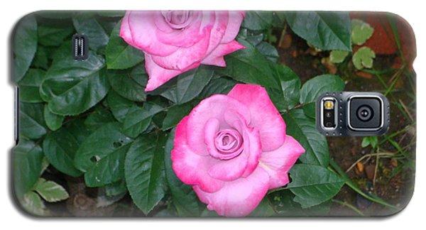 Paradise Rose Galaxy S5 Case