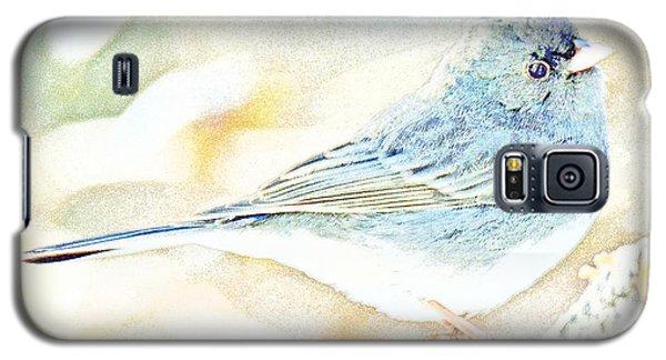Slate-colored Junco, Snowbird, Male, Animal Portrait Galaxy S5 Case