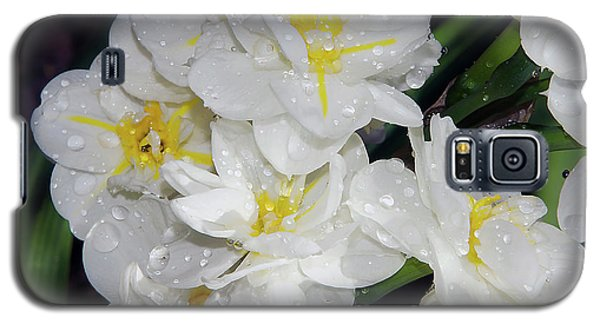 Galaxy S5 Case featuring the photograph Spring Flower by Elvira Ladocki