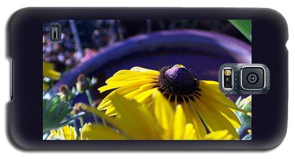 Sun Glory Series Galaxy S5 Case
