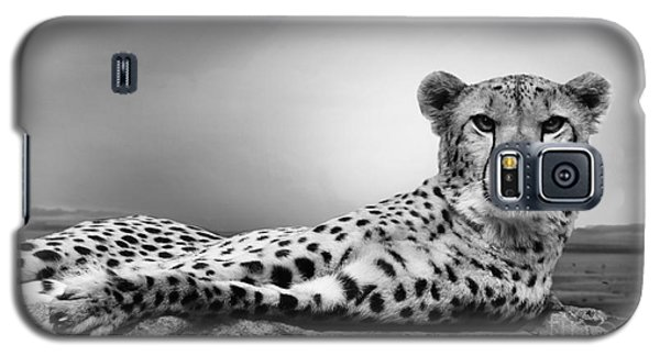 Galaxy S5 Case featuring the photograph The Cheetah by Christine Sponchia