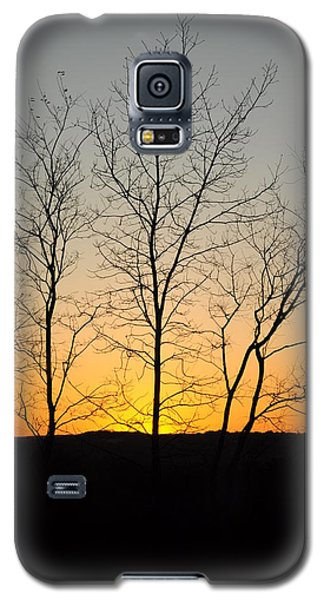 3 Trees Galaxy S5 Case