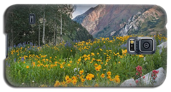 Wasatch Mountains Galaxy S5 Case