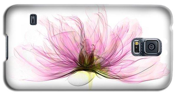 X-ray Of Peony Flower Galaxy S5 Case