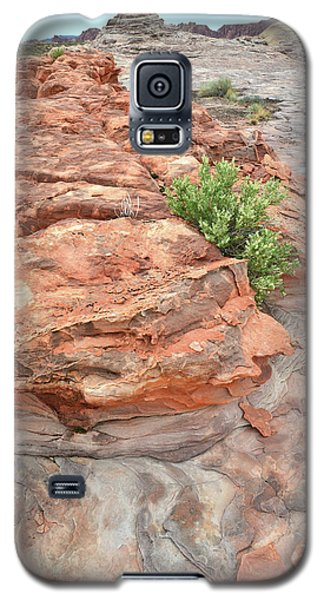 Colorful Sandstone In Valley Of Fire Galaxy S5 Case
