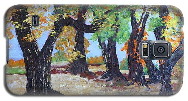 #35 Cottonwood Colors Galaxy S5 Case