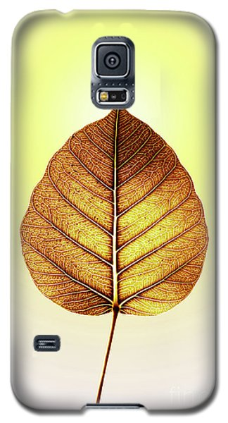 Galaxy S5 Case featuring the photograph Pho Or Bodhi by Atiketta Sangasaeng