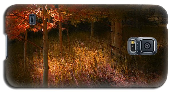 3907 Galaxy S5 Case by Peter Holme III
