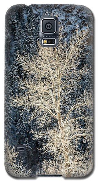 Colorado Winter Galaxy S5 Case