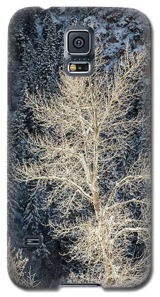 Colorado Winter Galaxy S5 Case