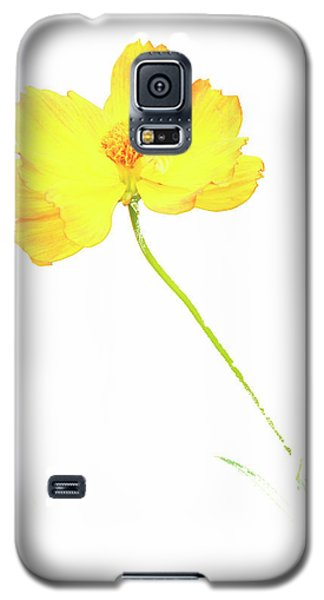 Cosmos Flower Galaxy S5 Case