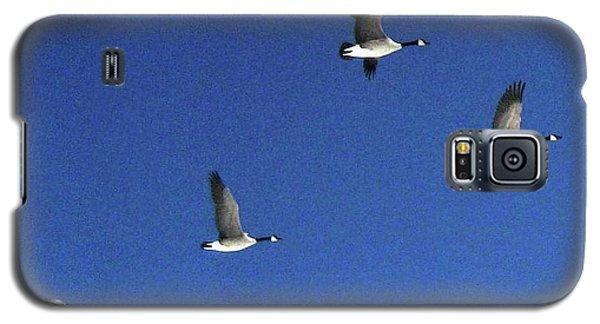 4 Geese In Flight Galaxy S5 Case