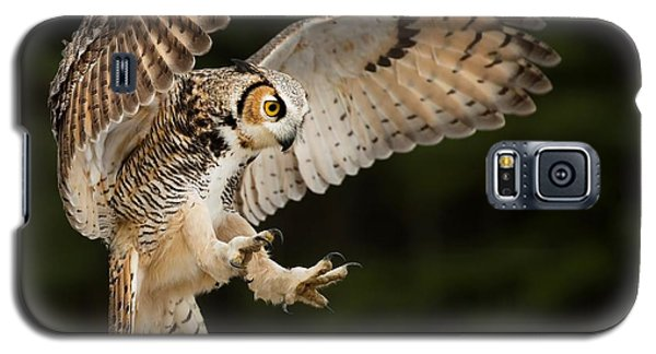Great Horned Owl Galaxy S5 Case by CR Courson