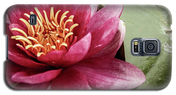 Galaxy S5 Case - Lotus by Cesar Vieira