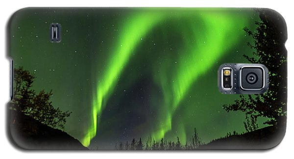 Northern Lights, Aurora Borealis At Kantishna Lodge In Denali National Park Galaxy S5 Case