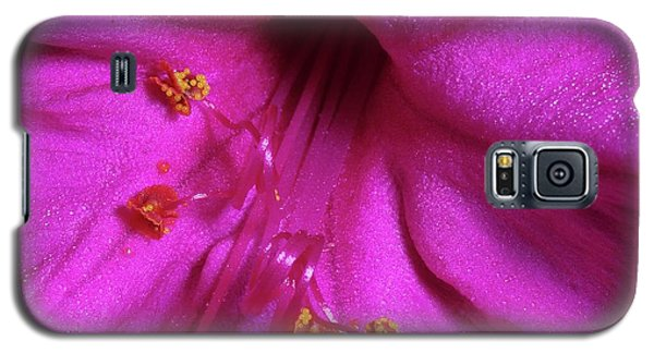 Galaxy S5 Case featuring the photograph 4 O'clock Bloom by Richard Rizzo