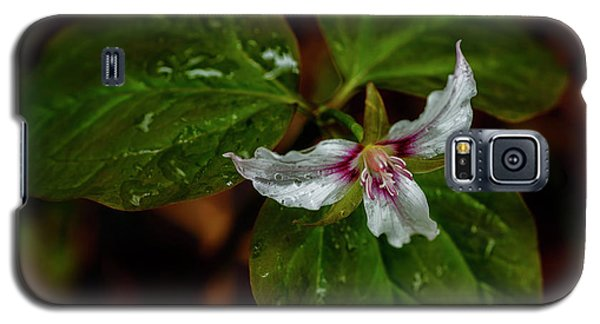 Galaxy S5 Case featuring the photograph Painted Trillium  by Thomas R Fletcher