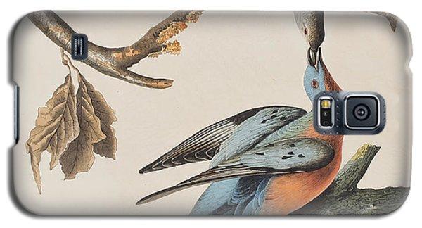 Passenger Pigeon Galaxy S5 Case