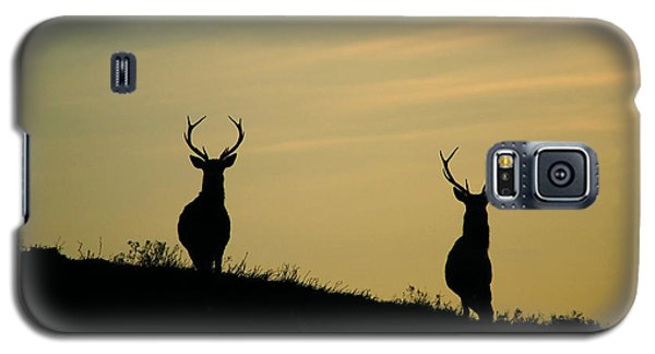Red Deer Stags  Galaxy S5 Case