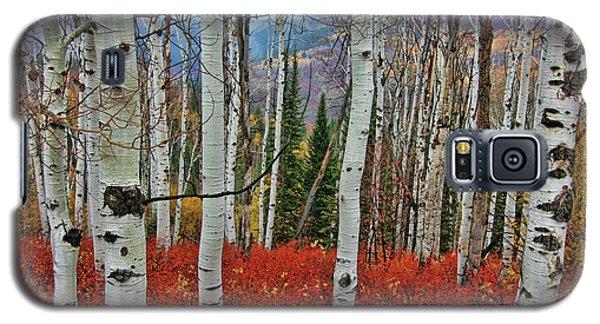 Rocky Mountain Fall Galaxy S5 Case