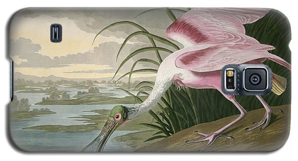 Roseate Spoonbill Galaxy S5 Case by Rob Dreyer