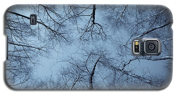 Trees In Epping Forest Galaxy S5 Case