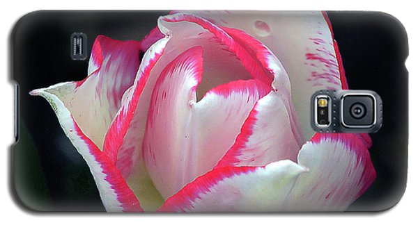 Galaxy S5 Case featuring the photograph Tulip by Elvira Ladocki