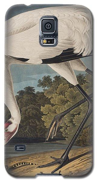 Whooping Crane Galaxy S5 Case by John James Audubon