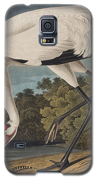 Whooping Crane Galaxy S5 Case by John James Audubon