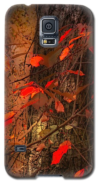 4019 Galaxy S5 Case by Peter Holme III