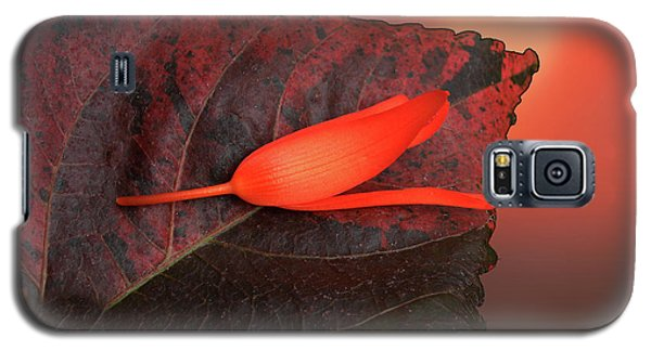 Galaxy S5 Case featuring the photograph 4366 by Peter Holme III